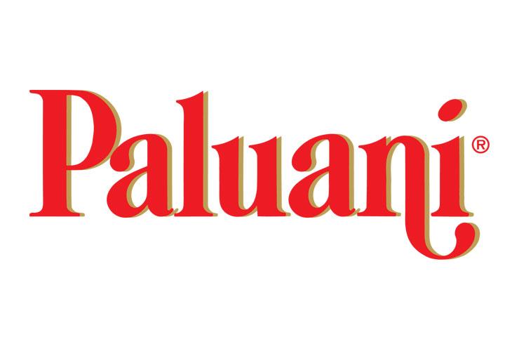 Paluani - riconfigurazione magazzino e servizio di ispezione di sicurezza